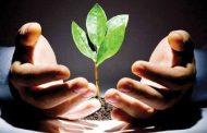 عوامل توسعه مهارت های فردی برای موفقیت