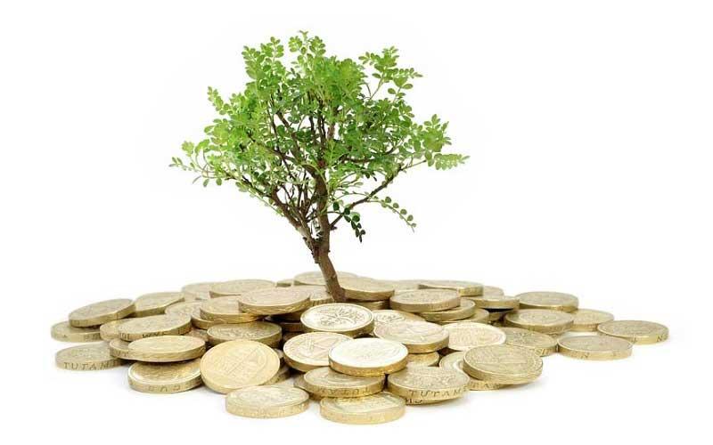سرمایه گذاری روی توسعه شخصی