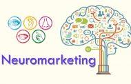 ۱۵ کاربرد بازاریابی عصبی در عمل
