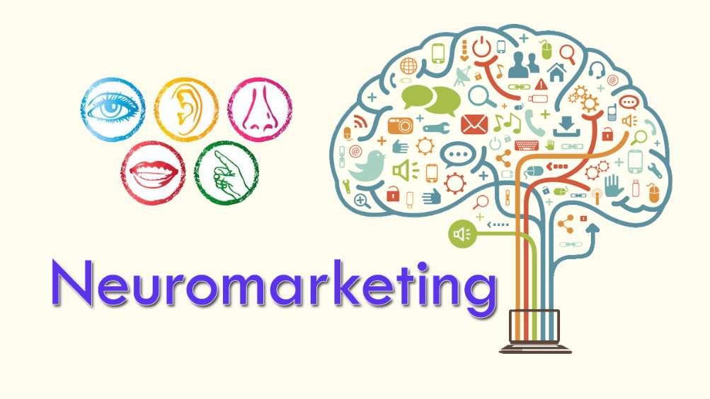بازاریابی عصبی 1