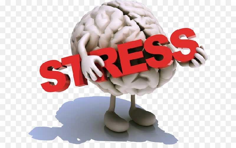 عوارض استرس بر مغز